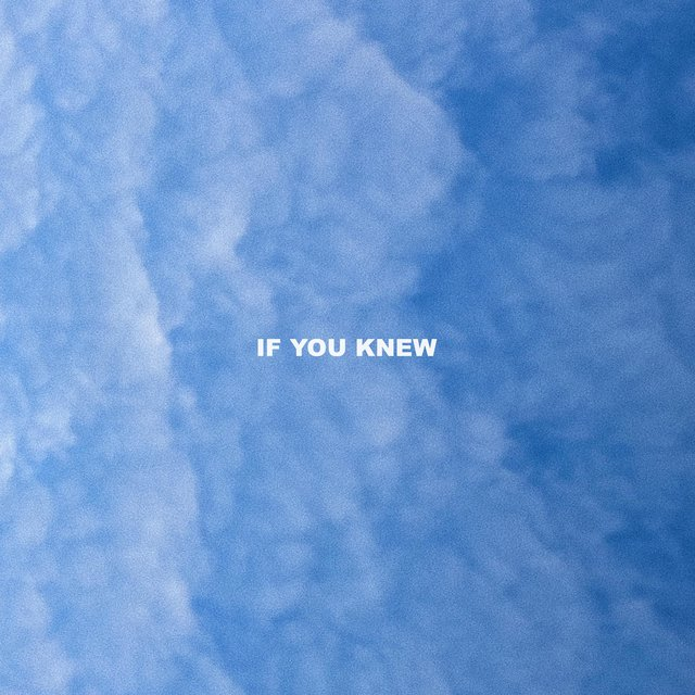 If You Knew (feat. Verzache)