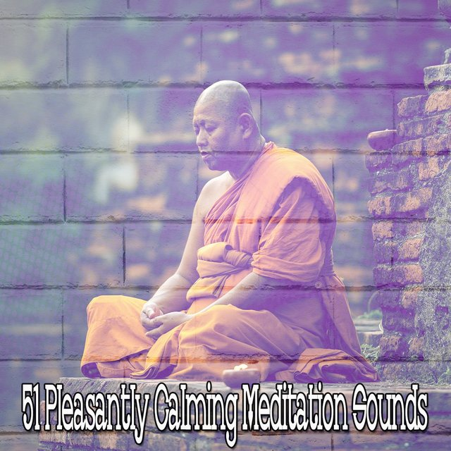 51 Pleasantly Calming Meditation Sounds
