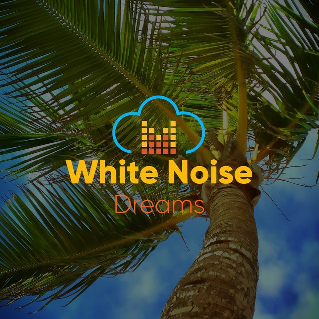 # 1 Album: White Noise Dreams