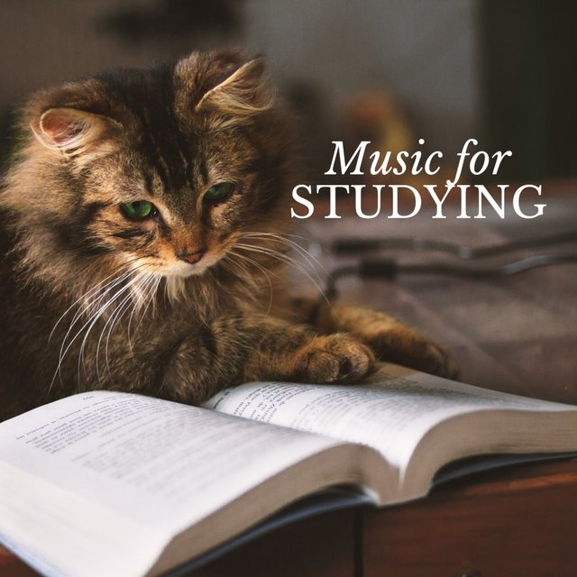 Classical Music for Studying & Brain Power