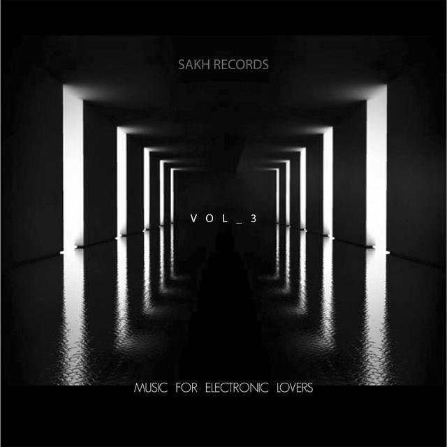Music For Electronic Lovers, Vol. 3