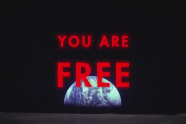 You Are Free (Lyric Video)