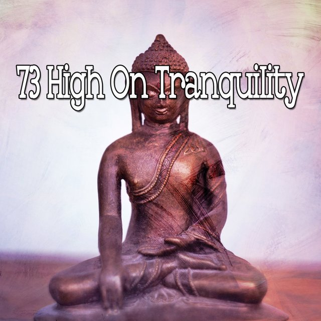 73 High on Tranquility