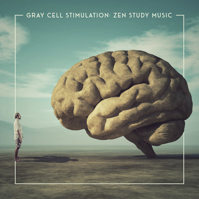 Gray Cell Stimulation: Zen Study Music