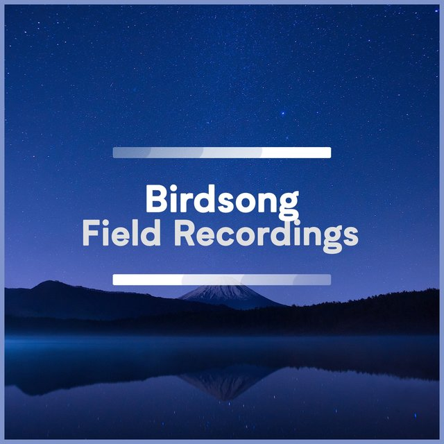 Calm Rustic Birdsong Field Recordings