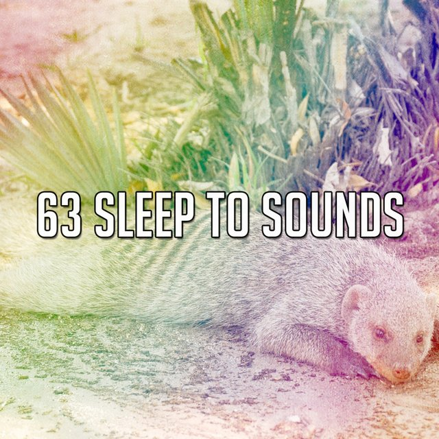 63 Sleep to Sounds