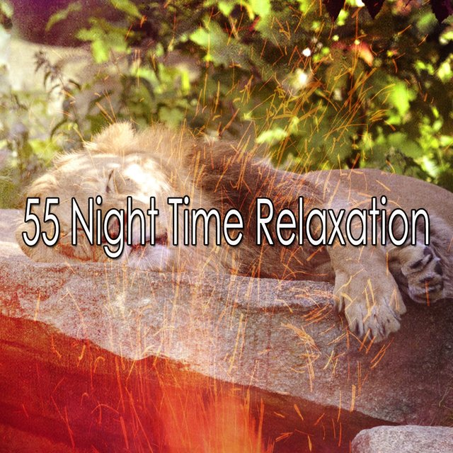 55 Night Time Relaxation