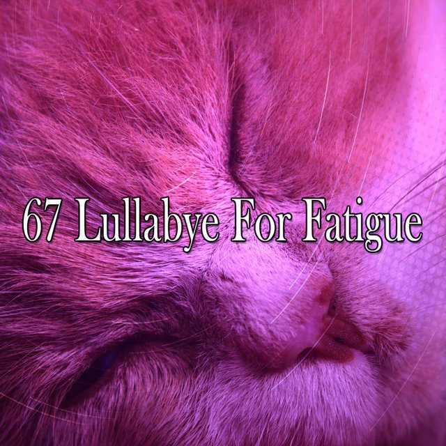 67 Lullabye for Fatigue