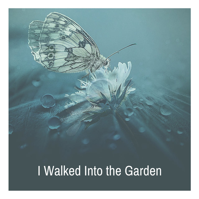 I Walked Into the Garden