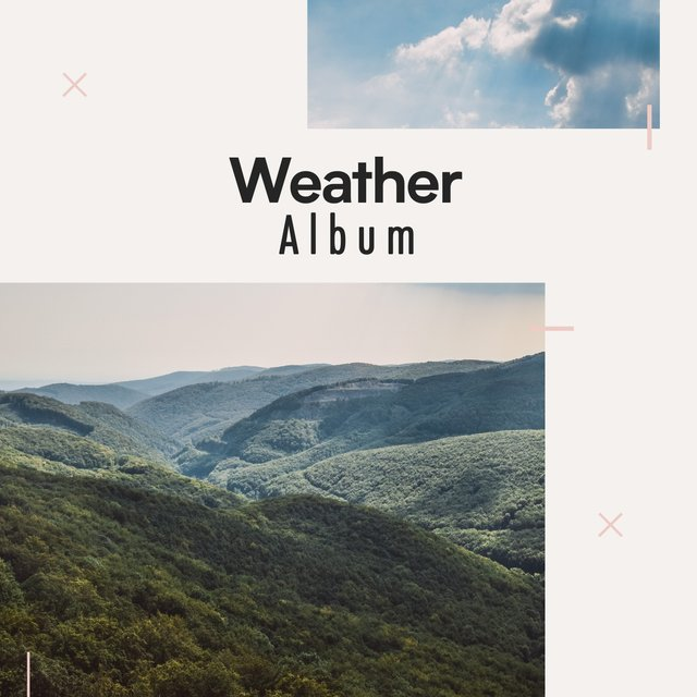 Calm Garden Weather Album