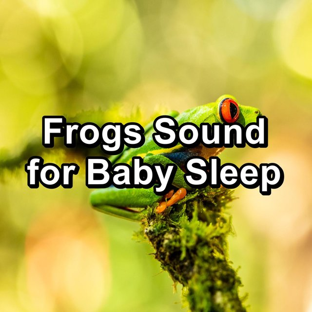 Frogs Sound for Baby Sleep