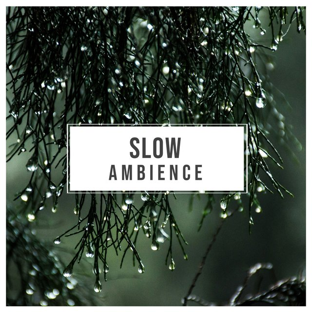 # Slow Ambience