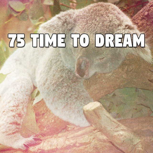 75 Time to Dream