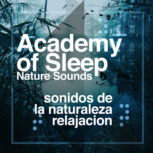 Academy of Sleep - Nature Sounds