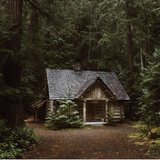 Stash House In The Forest