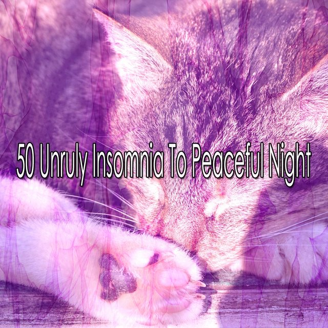 50 Unruly Insomnia to Peaceful Night
