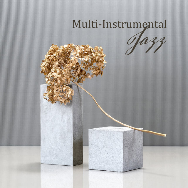 Multi-Instrumental Jazz - 15 Tracks for Saxophone, Acoustic Guitar, Trumpet, Violin, Electric Guitar and Keyboard