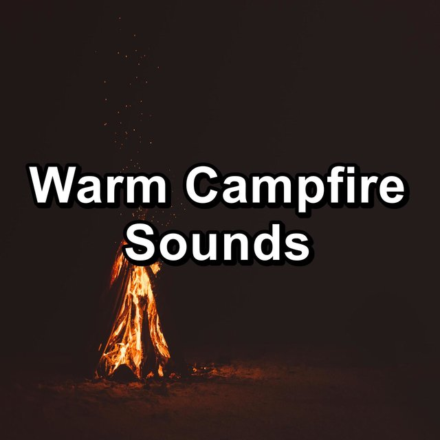 Warm Campfire Sounds