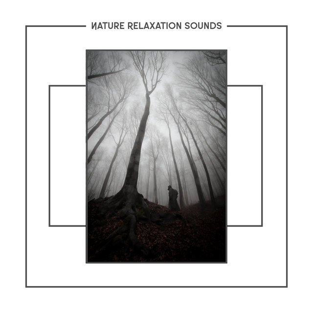 Nature Relaxation Sounds - Mix Of Relaxing Music With The Calm Sounds Of The Environment