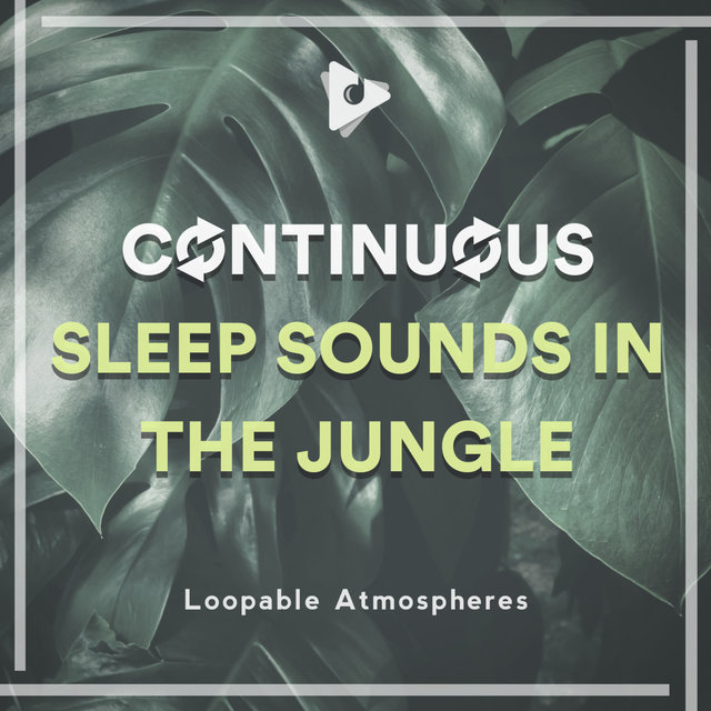 Continuous Sleep Sounds in the Jungle