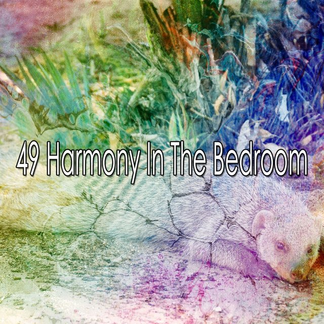 49 Harmony in the Bedroom