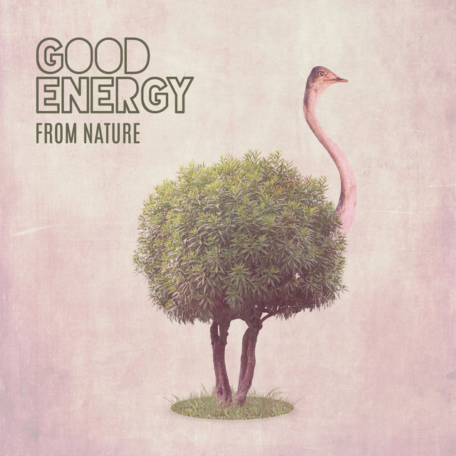 Good Energy from Nature: Deep Source of Life Inspiration