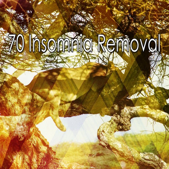 70 Insomnia Removal