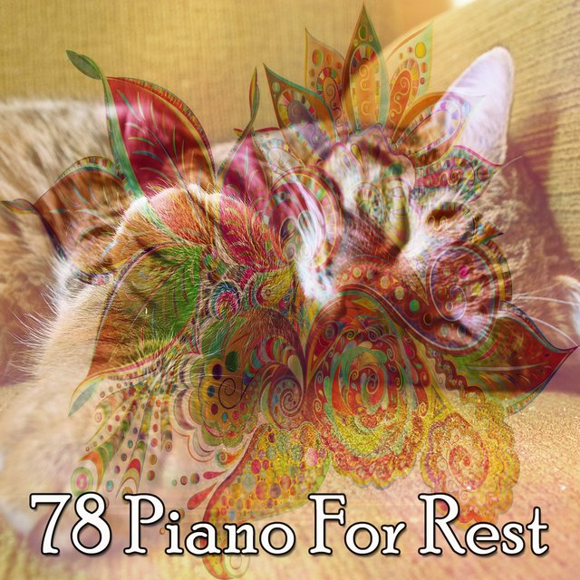 78 Piano for Rest