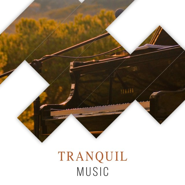 Tranquil Ambience Music