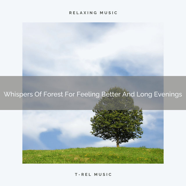Whispers Of Forest For Feeling Better And Long Evenings