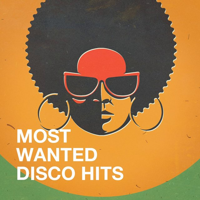 Most Wanted Disco Hits