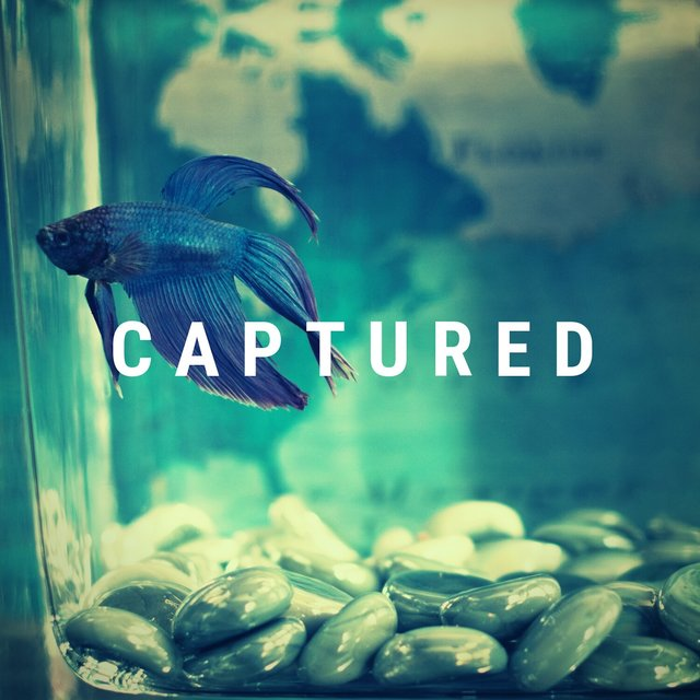Captured