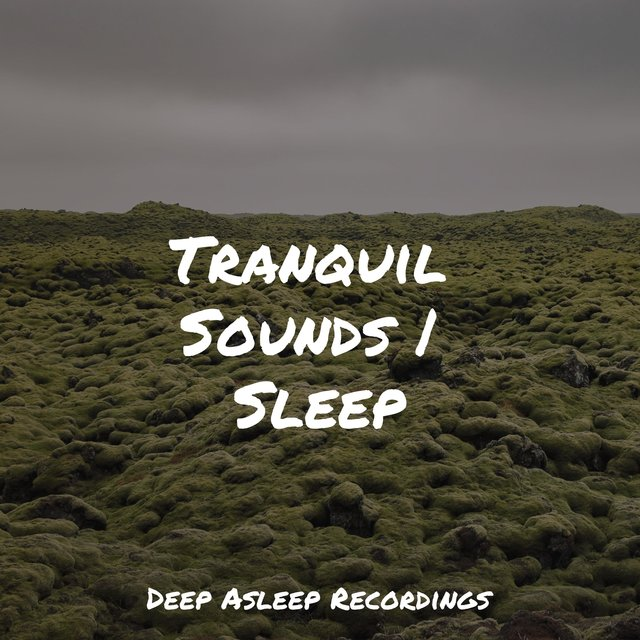 Tranquil Sounds | Sleep