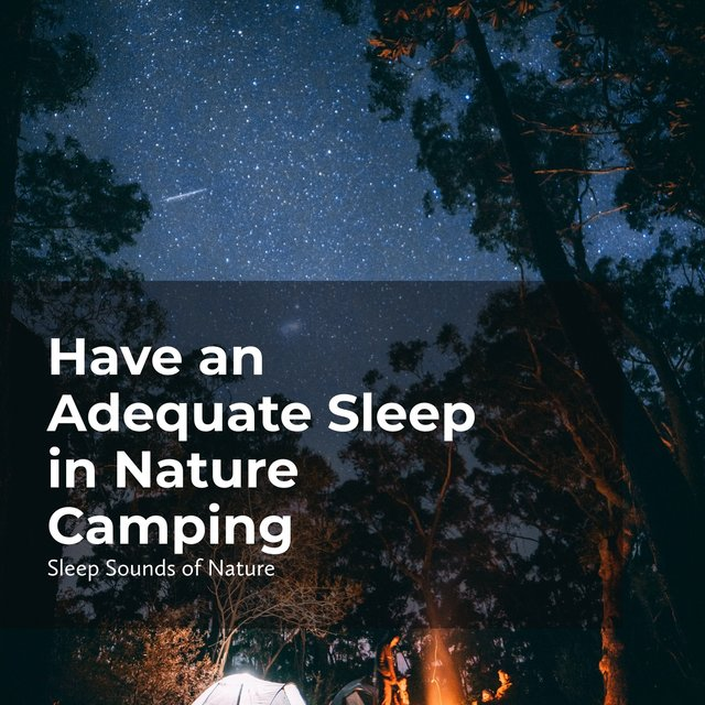 Have an Adequate Sleep in Nature Camping