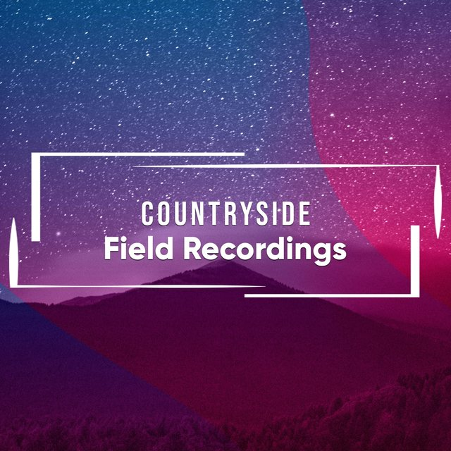 Calm Rustic Countryside Field Recordings