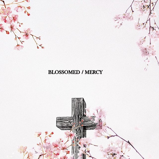 Blossomed / Mercy