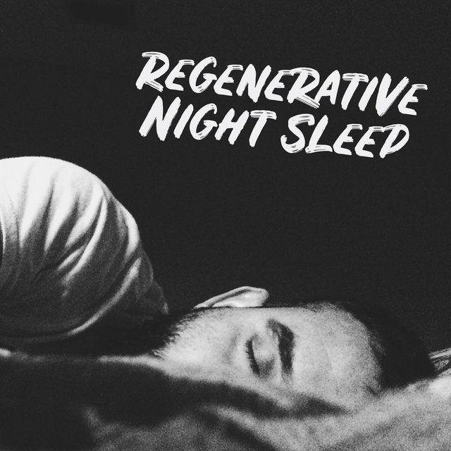 Regenerative Night Sleep - Soothing New Age Melodies for Deep Sleep, Have a Nice Dream, Moon Shadow, Stop Snoring, Insomnia Relief, Bedtime Music