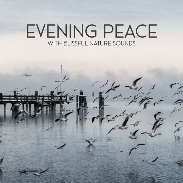 Evening Peace with Blissful Nature Sounds