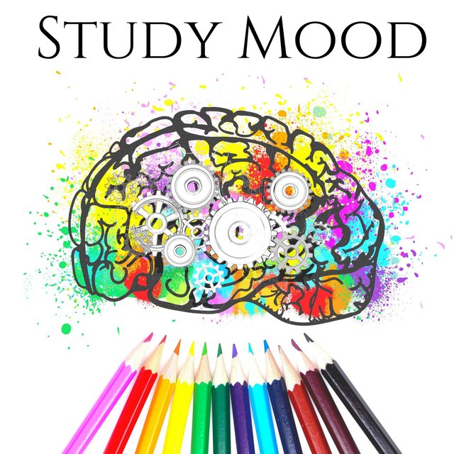 Study Mood: Deep Focus Music to Improve Memory and Concentration