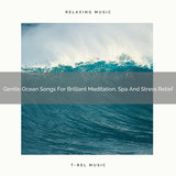 Gentle Ocean Songs For Brilliant Meditation, Spa Tension Ease