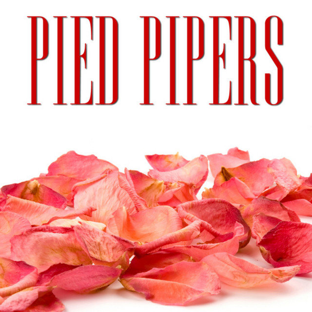 Classic Years of Pied Pipers