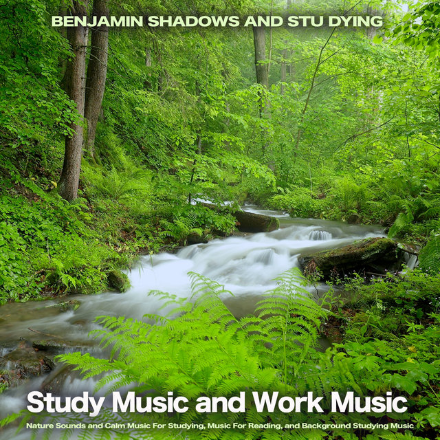 Study Music and Work Music: Nature Sounds and Calm Music For Studying, Music For Reading, and Background Studying Music