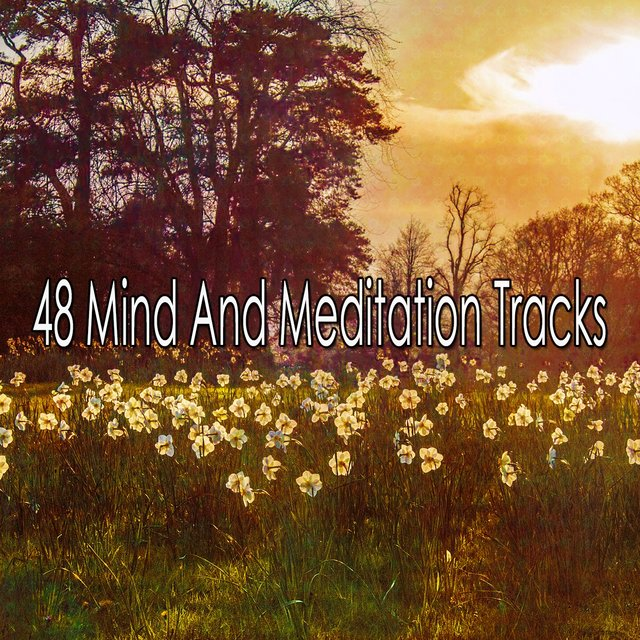 48 Mind and Meditation Tracks
