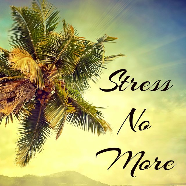 Stress No More - Meditation Relaxation Club Deep Sleep Study and Concentration Music