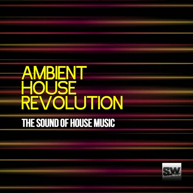 Ambient House Revolution (The Sound of House Music)
