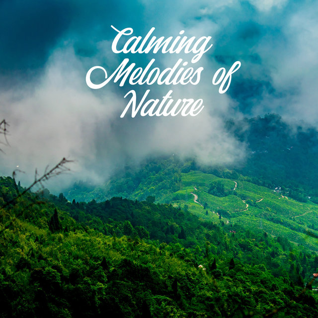 Calming Melodies of Nature -  Music That'll Help You Calm Down, Relax and Soothe, Relieve Stress, Fatigue and Weariness, Helps Regenerate Your Strength and Regain Inner Harmony