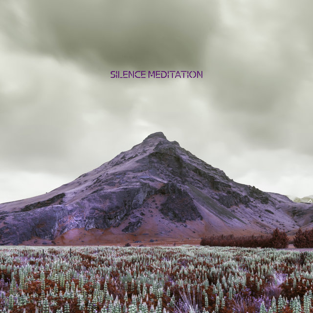 Silence Meditation - New Age Music that Will Help You Calm Down the Mind and Body