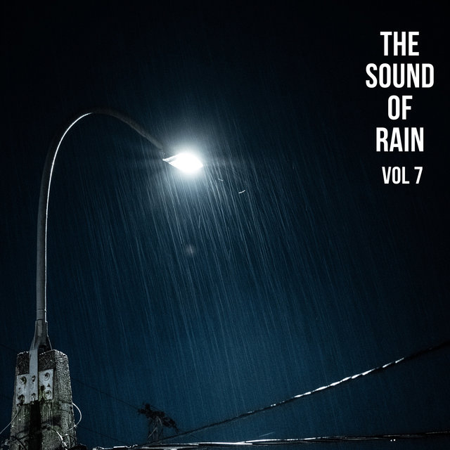 The Sound of Rain Vol. 7, Library of Thunder and Lightning Storms