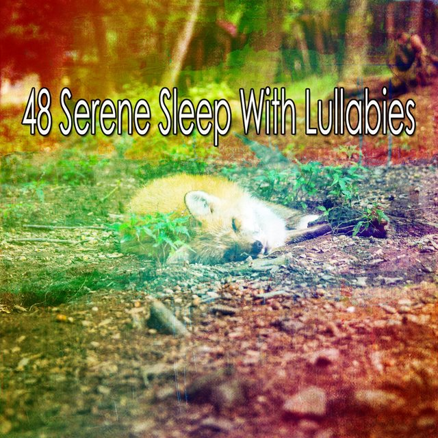 48 Serene Sleep with Lullabies