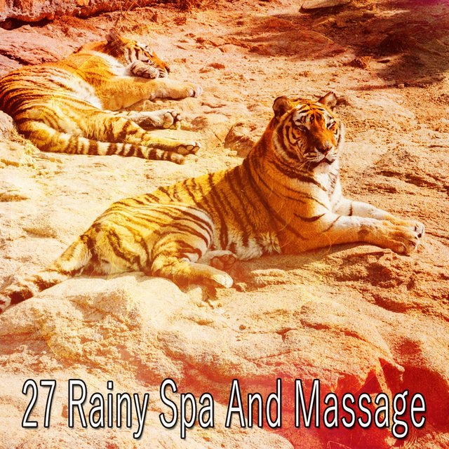 27 Rainy Spa and Massage